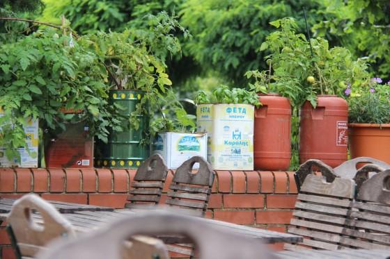 urban-gardening-balkongarten