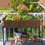 urban-gardening-hochbeet